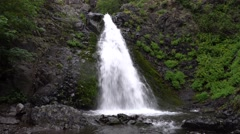 Dog Creek Falls, Columbia River Gorge National Scenic Area, Washington Stock Footage