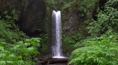Weisendanger Falls, Columbia River Gorge National Scenic Area, Oregon Stock Footage