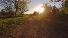Green summer park. Sunset. Low and fast flight. Aerial footage. Stock Footage