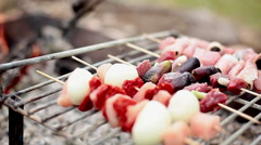 Kebabs cooking on grill Stock Footage