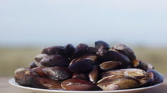 Person picking up plate of fresh mussels Stock Footage