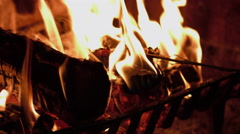 Rose burning in a fireplace - stock footage