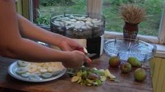 Female hand cut fruit slice for dryer. Rural kitchen room. 4K Stock Footage