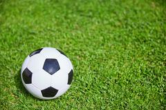 Football on the green grass of the soccer field Stock Photos