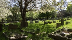 Peaceful spring morning at graveyard. UK, Frodsham Stock Footage