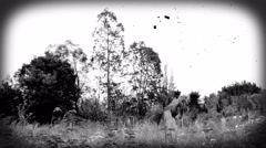 Time-lapse - landscape with trees in black and white with scratches and spots. Stock Footage