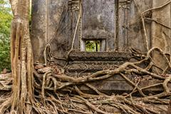 Old Buddhist temple with tree roots Stock Photos