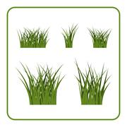 Green grass bushes isolated set - stock illustration