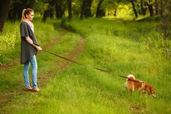 Girl holds leashed dog Shiba Inu. - stock photo