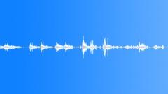 Wire Bunch Movement 3 Sound Effect