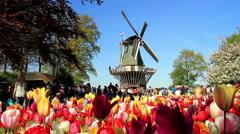 LISSE, THE NETHERLANDS - MAY 05 2016: Park Keukenhof Stock Footage