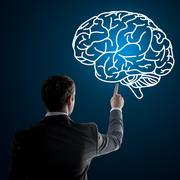 Close up of businessman pointing at brain Stock Photos