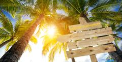 sign, palm trees and tropical destinations - stock photo