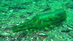 Glass bottle on the seabed, contamination. - stock footage