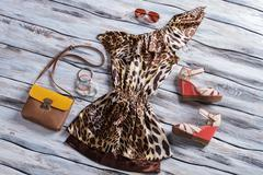 Leopard dress with bicolor purse. - stock photo