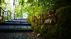 SteadyCam Walking up stairs Step Footpath Stock Footage