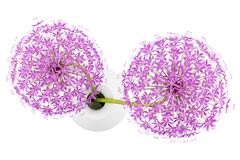 Top view of purple flowers in vase isolated on white background. 3d illustrat Stock Illustration