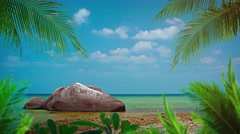Palm Leaves and an Enormous Boulder over a Tropical Beach Paradise - stock footage