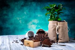 Ground coffee with coffe plants Stock Photos