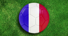 France euro 2016 football soccer championship teams,  flags animated on soccer Stock Footage