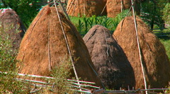 Big stacks of dry hay in a mountain village - stock footage