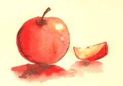 Apple water color illustration..Beautiful painting of red apple. Good art to  Stock Illustration