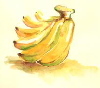 Water color yellow banana illustration..fruit painting with water color - stock illustration