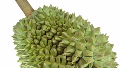 Dolly shot of Durian on white background. Stock Footage