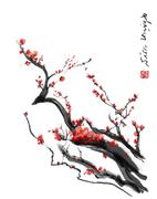Sakura, cherry blossom plum chinese brush paintingRed cherry blossom chinese - stock illustration