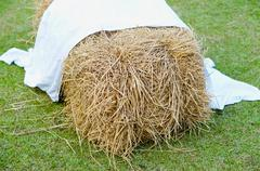 Pile of straw on grass background - stock photo