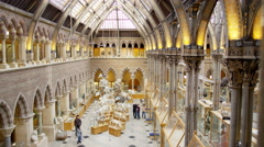 4K View of interior architecture, visitors & exhibits in Natural History museum Stock Footage