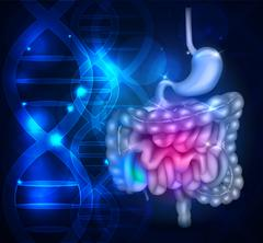 Bowels and stomach abstract scientific background Stock Illustration