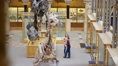4K Families visiting a Natural History museum looking at the dinosaur exhibits - stock footage