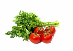 Linking of parsley and bunch of tomatoes Stock Photos