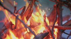 Bonfire fire on wild nature background with mountains. Indigo color Stock Footage