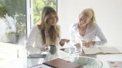 4K Attractive businesswomen working together in light modern office  Stock Footage
