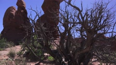 ARCHES NATIONAL PARK, unnamed pinnacles Stock Footage