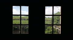Vineyard view through a window. - stock footage