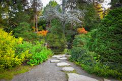 Japanese garden in autumn - stock photo