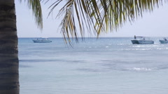 Catamaran Sailboat in Caribbean Sea at Saona Island Dominican Republic with Palm Stock Footage