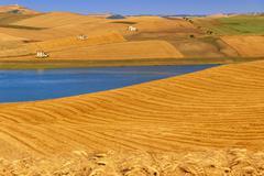 Farmhouses surrounded by grain fields. Lake Basentello,Poggiorsini (ITALY). Stock Photos