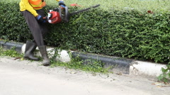 Gardener is trimming the hedge Stock Footage