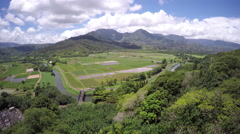 4K Scenic aerial view of lookout point in Hawaii Stock Footage