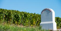Boundary monument  Champagne vineyards in the Cote des Bar area - stock photo