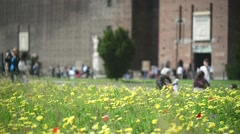 Milan, Italy - Castle Sforzesco - pedestrian walking by spring flowers blooming - stock footage