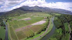 4K aerial view of a lookout point in Hawaii Stock Footage