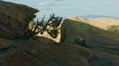 Walking the Cliffs Edge at the El Malpais in NM Stock Footage