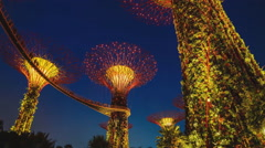 Botanical Garden in Singapore. National Park Orchid night (time-lapse) - stock footage