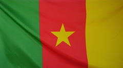 Slowmotion real textile Flag of Cameroon - stock footage