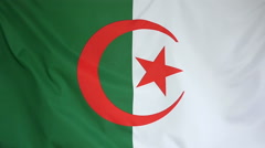 Slowmotion real textile Flag of Algeria Stock Footage